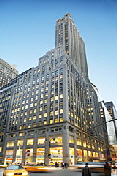 Law Firm People Contact Information